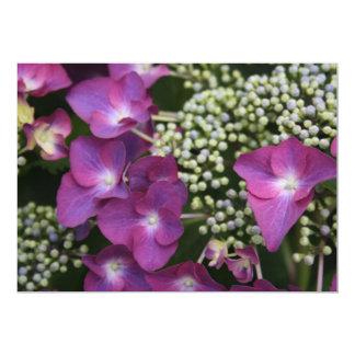 Purple Hydrangea  Invitation