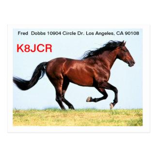 QSL Card w/Galloping Horse Postcard