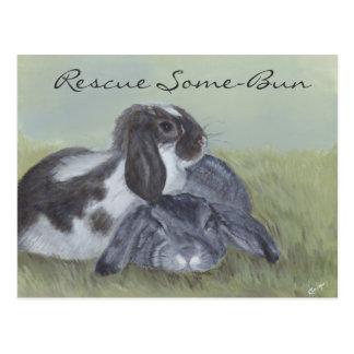Rabbit Rescue Card Postcard