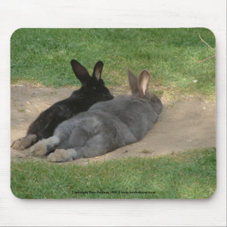 Rabbits stretched out - Mousemat. Customise. Mouse Pad