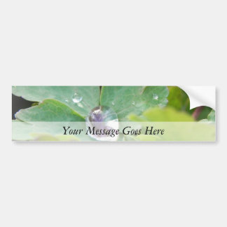 Raindrop on Columbine Leaf Bumper Sticker