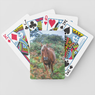 Rare Palomino New Forest Pony & Bracken - England Card Decks