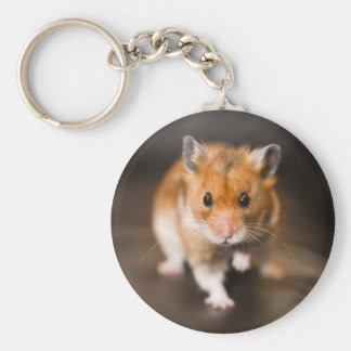 Ratty the hamster basic round button key ring