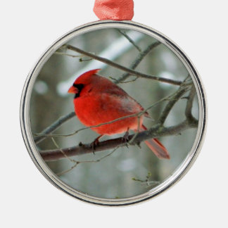 Red Cardinal Premium Ornament