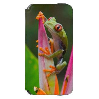 Red-eye tree frog, Costa Rica 2 Incipio Watson™ iPhone 6 Wallet Case