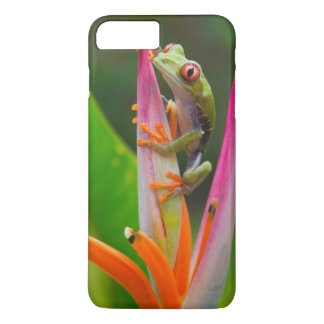 Red-eye tree frog, Costa Rica 2 iPhone 7 Plus Case