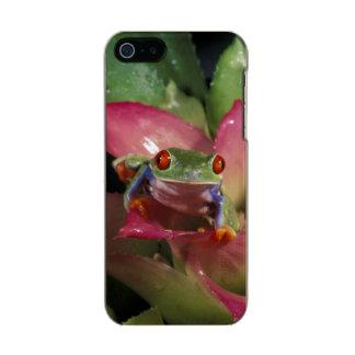 Red-eyed tree frog Agalychnis callidryas) Incipio Feather® Shine iPhone 5 Case