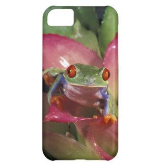 Red-eyed tree frog Agalychnis callidryas) iPhone 5C Case