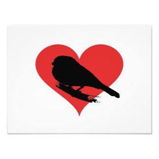 Red Heart Bird Photo Art