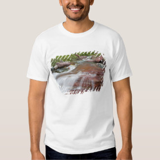 Red rock in Baring Creek in Glacier National T Shirts