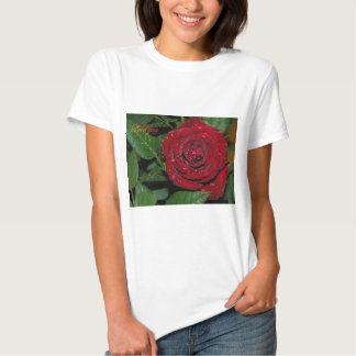 Red Rose #2 T Shirt