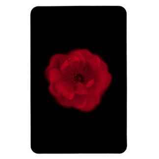 Red Rose. Black Background. Rectangular Photo Magnet