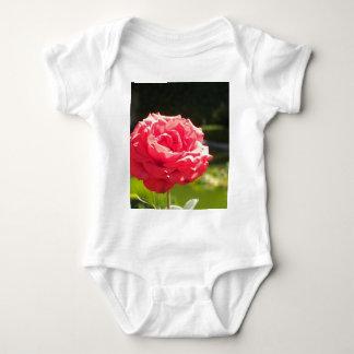 Red Rose Infant Creeper