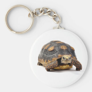 Redfoot Turtle Gifts Basic Round Button Key Ring