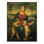 Renaissance Art, Madonna of the Goldfinch, Raphael Postcard