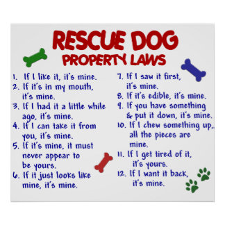 RESCUE DOG PL2 POSTER