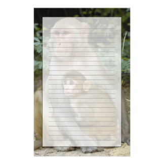 Rhesus Macaques Macaca mulatta) mother & baby Personalized Stationery