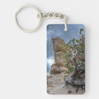 Rock Formation, Mt. Lemmon (add cell ph# on back) Double-Sided Rectangular Acrylic Key Ring