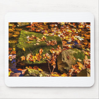 Rock in a Stream Mouse Pad