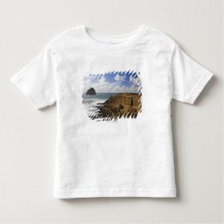 Rocky Oregon Pacific Coast in Pacific City T Shirt