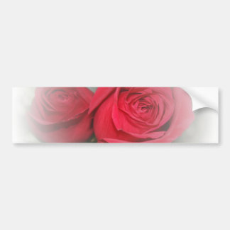 Romantic Soft Red Roses Bumper Sticker