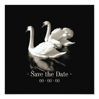 Romantic Swans - Save the date announcement