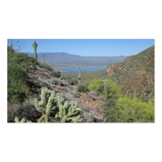 Roosevelt Lake From Tonto National Monument Pack Of Standard Business Cards