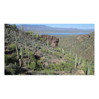 Roosevelt Lake View Tonto National Monument Pack Of Standard Business Cards