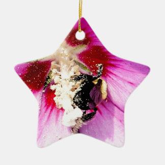 Rose of Sharon Stalker Ceramic Star Decoration