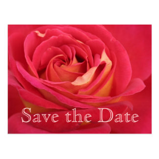 Rose Save the date 40th Birthday Celebration - Postcard