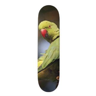Roseringed Parakeet,Keoladeo National Park, Custom Skateboard