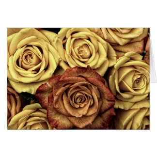Roses in Sepia Tone Greeting Card