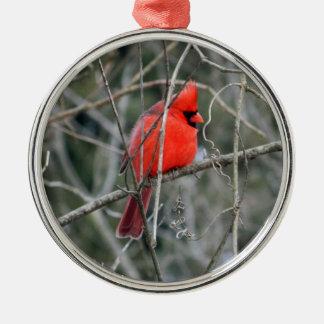Royal Red Cardinal Premium Ornament