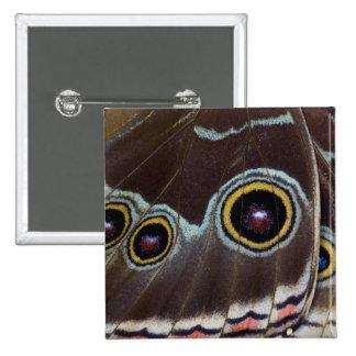 Sammamish Washington Tropical Butterfly 12 15 Cm Square Badge