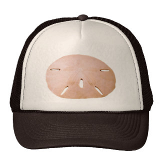 Sand Dollar Cap