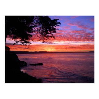Santa Cruz, CA. Sunrise Postcard