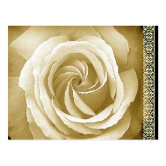 Save the Date Postcard Cream and Sepia Rose