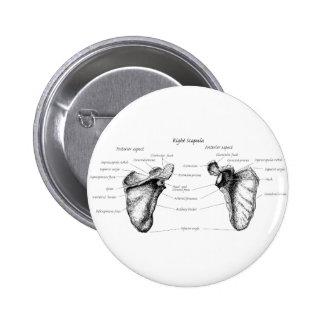 Scapula Details 6 Cm Round Badge