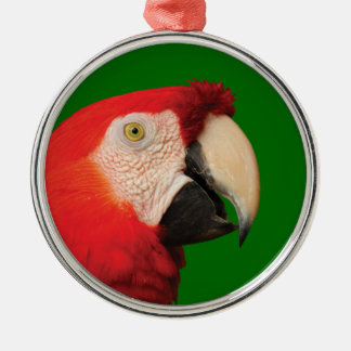 scarlet macaw Silver-Colored round decoration