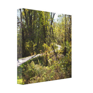 Scenic Nature Trail with Pathway Canvas Print