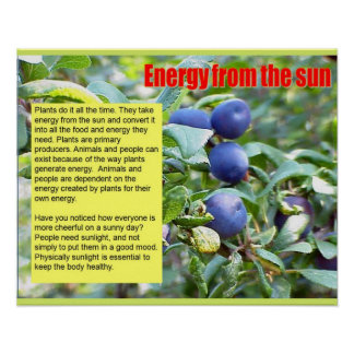 Science,Energy from the sun Poster