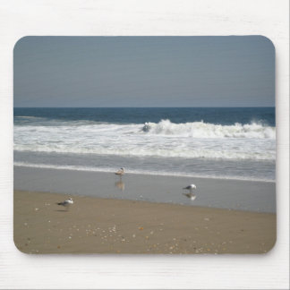 Seagulls on the shore mouse pad