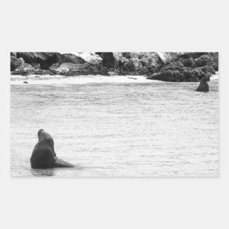 Seal Rectangular Sticker