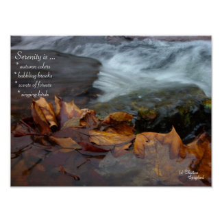 Serenity Creek Leaves Poster