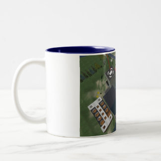 Sescond Life  Aerial of MATC Island Two-Tone Mug