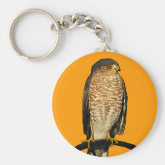 Sharp-Shinned Hawk Basic Round Button Key Ring