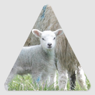 Sheep with her lamb triangle sticker