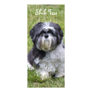 Shih Tzu dog beautiful cute photo bookmark Rack Card Design