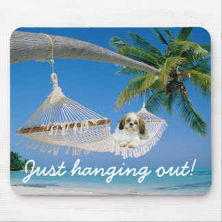 Shih Tzu Hanging Out Mousepad