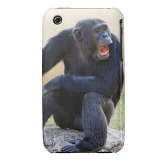 Shouting Chimp iPhone 3 Covers